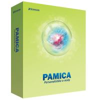 PAMICA SQL 2020 MAX NET5