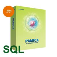 PAMICA SQL 2020 M50
