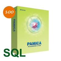PAMICA SQL 2020 M100